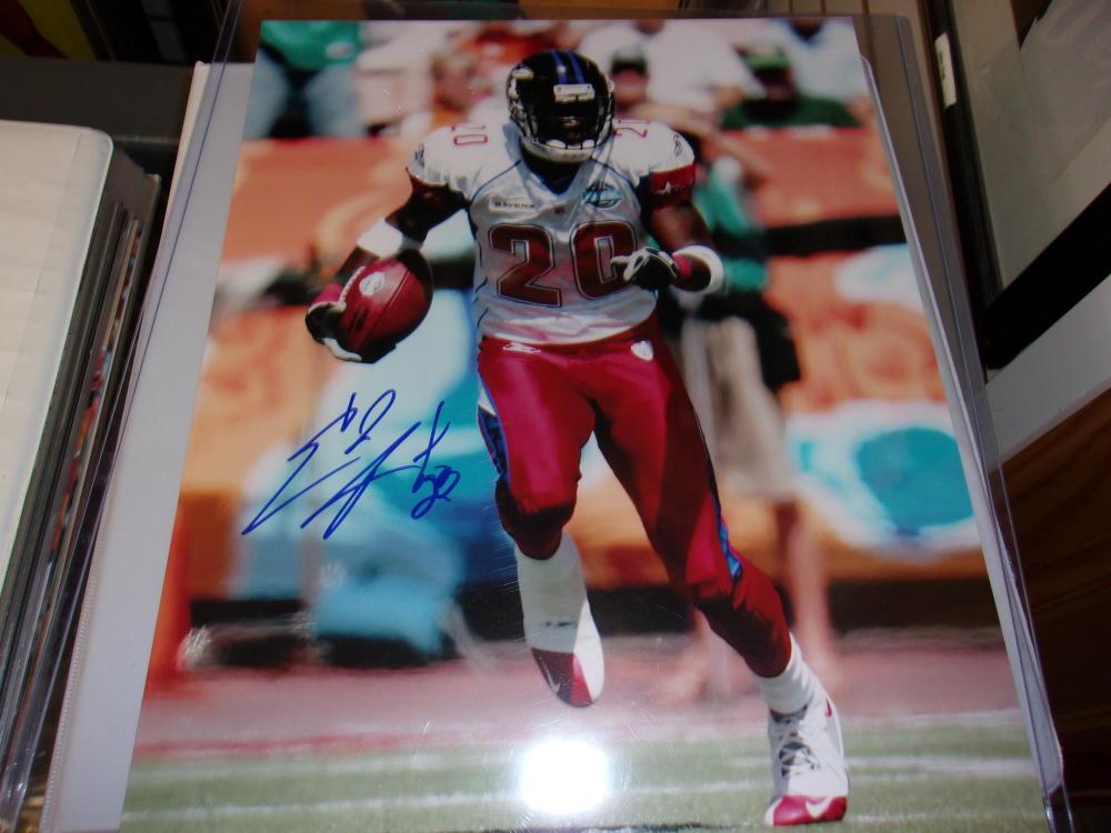 Ed Reed Baltimore Ravens Signed 11x14  Photo COA