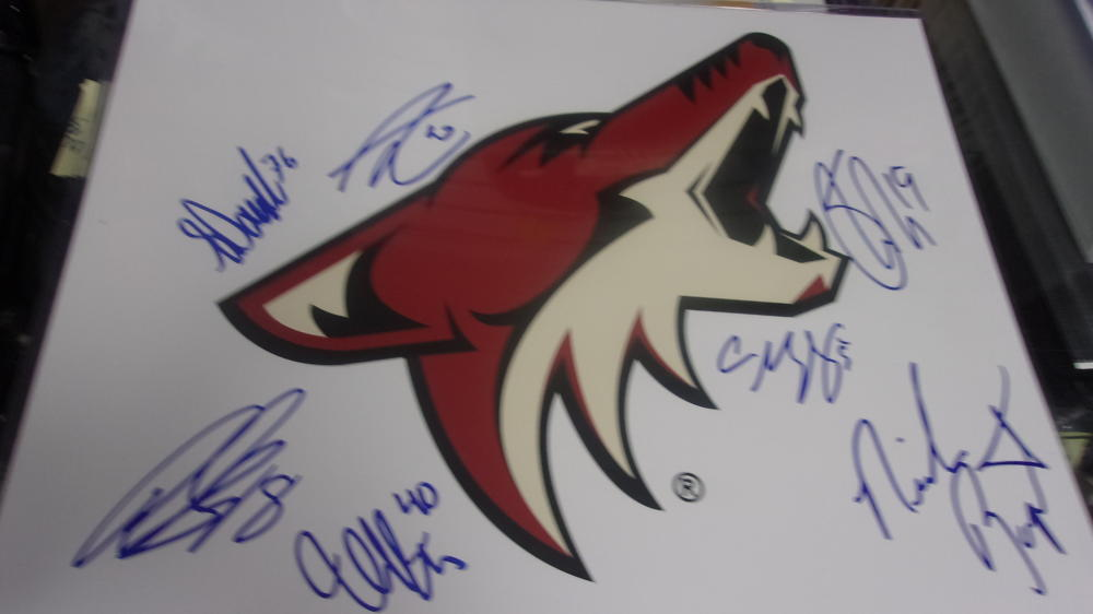 2015/16 Arizona Coyotes Team Signed 11x14 Photo COA