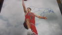 Doug McDermott Chicago Bulls signed 11x14 Photo COA